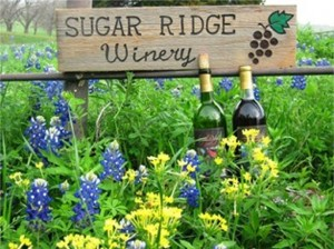 Sugar Ridge Winery is located in beautiful Bristol, Texas. Sugar Ridge Winery offers our great tasting wines in a beautiful setting. We have many different types of wines to choose from. We have a wide assortment of red and white wines or try some of our specialty wines like our Sangria, Party Pear or our Little Green Apple wine. We have a private tasting room available for parties, receptions and special events. Call 972-666-2888 for more information on our winery.